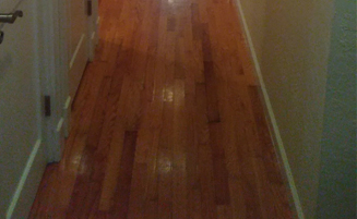 Wood Floors Throughout
